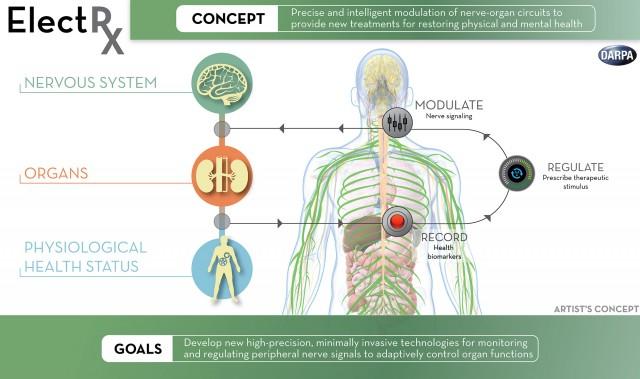 electrx-darpa-implant-diagram-640x379